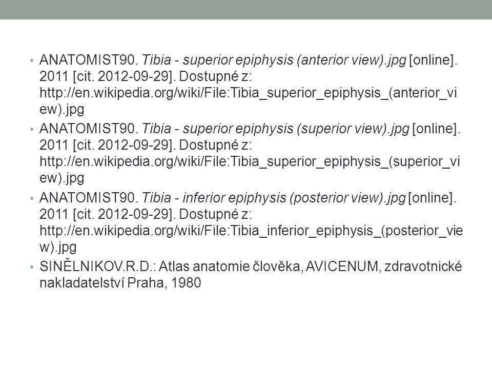 ANATOMIST90. Tibia - superior epiphysis (anterior view). jpg [online]